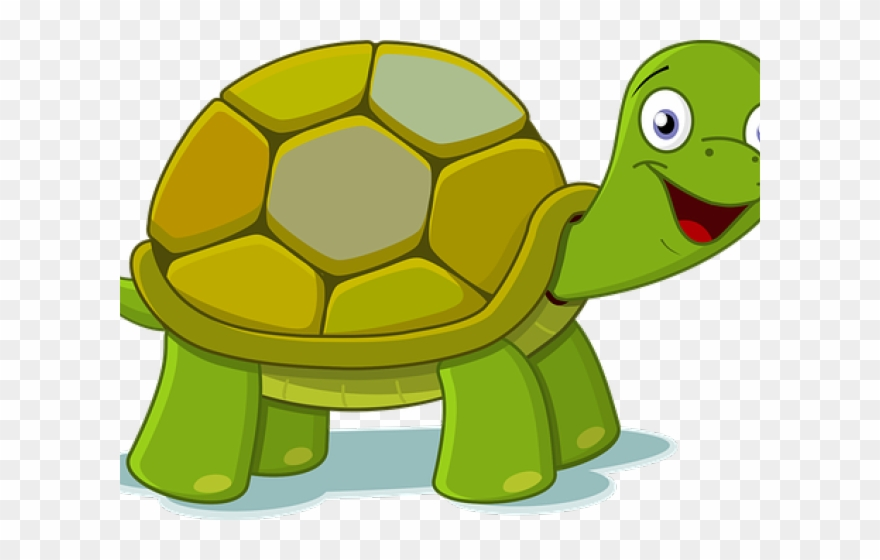 Cartoon Pictures Of Turtles.