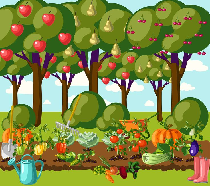 Cartoon Garden Clipart.