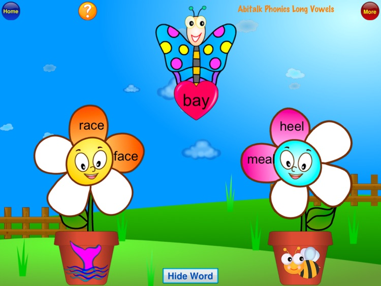 ABC Phonics Butterfly Long Vowels.