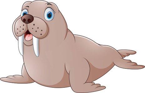 Cartoon cute walrus Clipart Image.