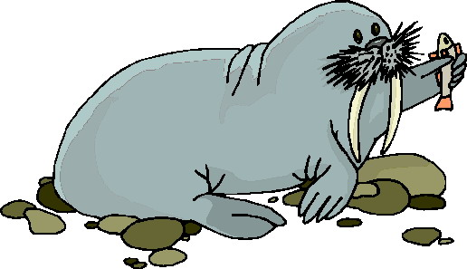 ▷ Walruses: Animated Images, Gifs, Pictures & Animations.