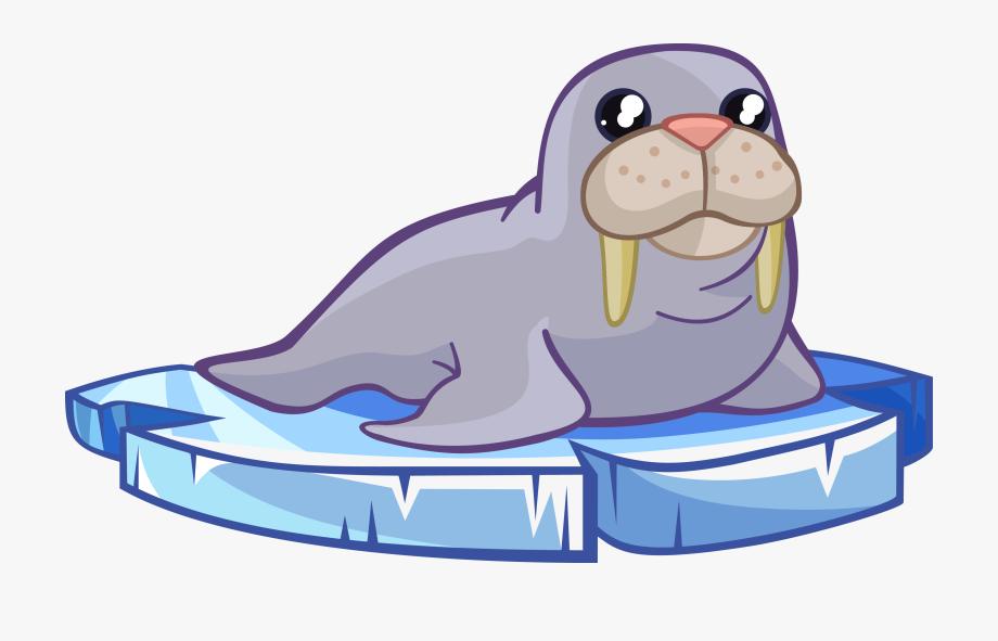 Sea Lion Clipart Animated.