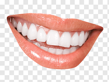 White teeth, Smile Tooth whitening Mouth, Teeth free png.