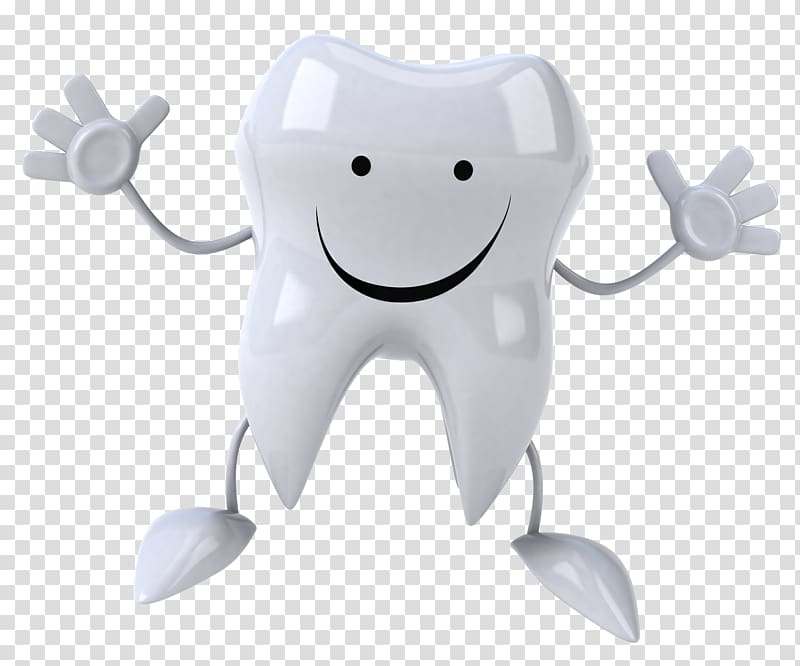 Animated tooth illustration, Dentistry Human tooth Crown.
