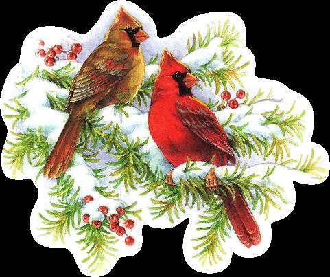 CHRISTMAS CARDINALS CLIP ART.