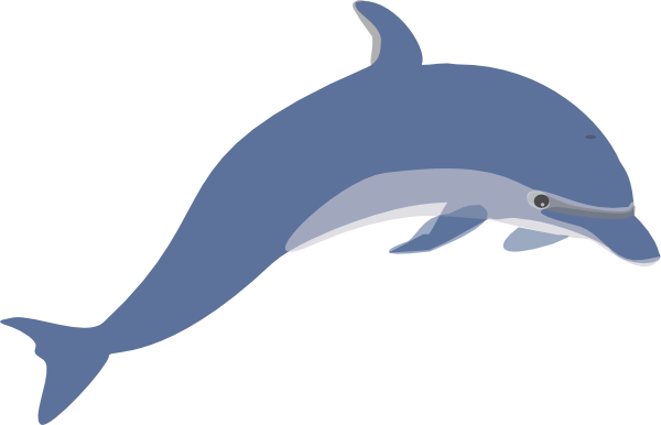 Free Animated Dolphins, Download Free Clip Art, Free Clip.