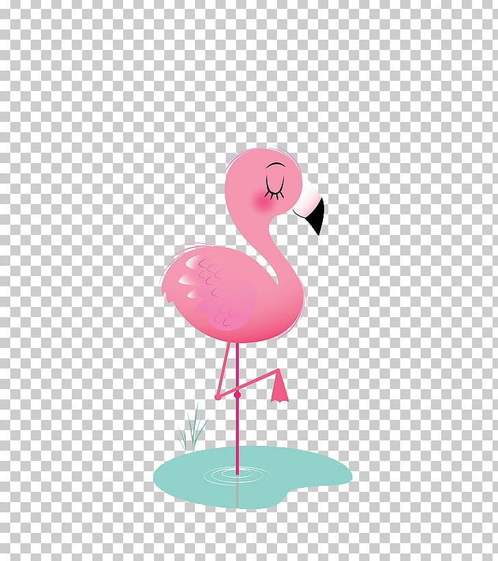 Bird Flamingos Animation Icon PNG, Clipart, Animal, Animals.