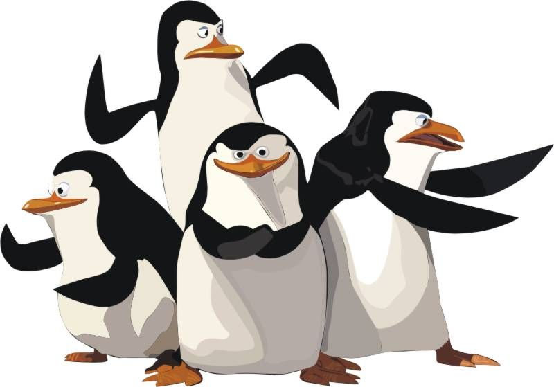 Pin on Penguins.