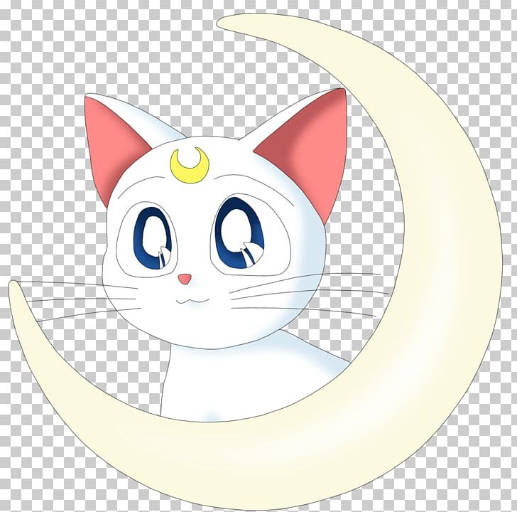 Artemis Luna Sailor Moon Sailor Venus Sailor Mercury PNG.