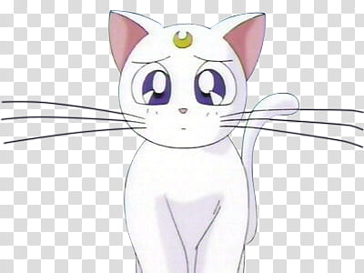 Artemis Sailor Moon, Sailormoon's cat transparent background.