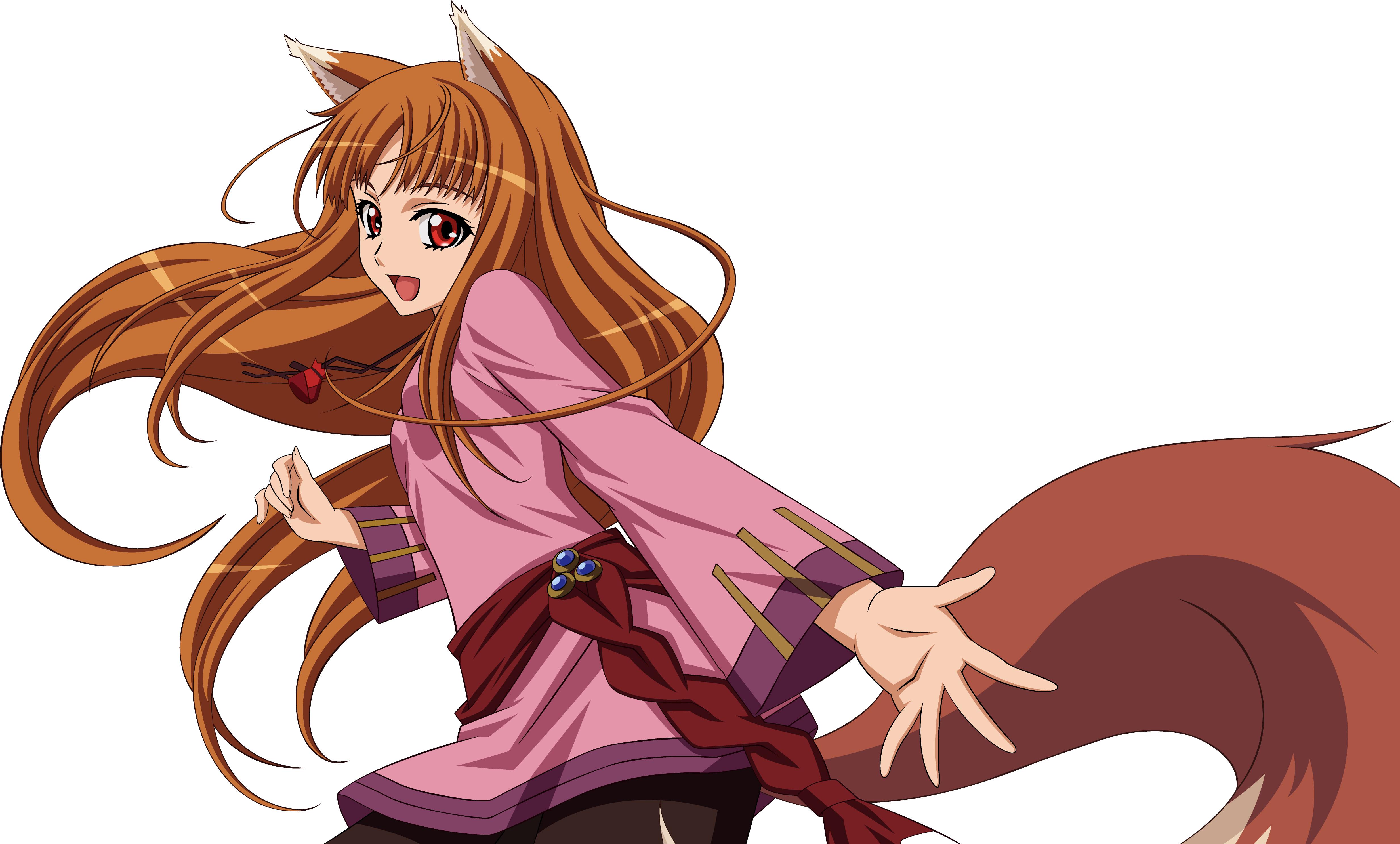 Wallpaper : illustration, anime, cartoon, fox, Spice and Wolf, girl.