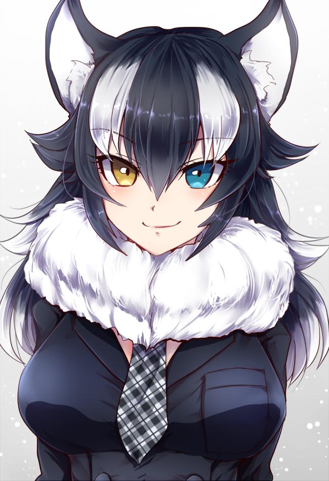 Grey Wolf (Kemono Friends).