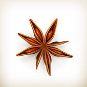 Clipart of Star Anise star.