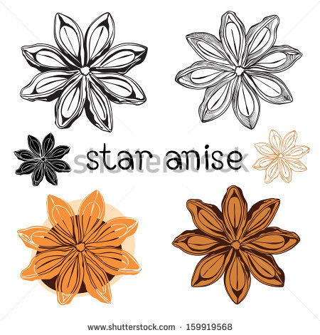 Anise free vector download (6 Free vector) for commercial use.