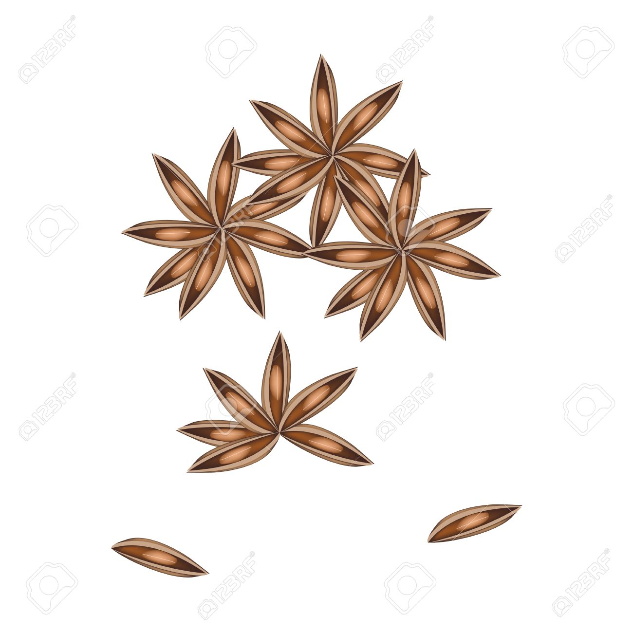Vegetable And Herb, A Pile Of Dried Star Anise, Star Aniseed.