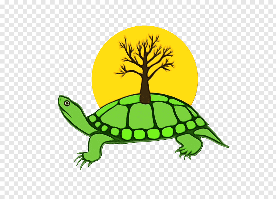 Sea Turtle, Anishinaabe, Indigenous Peoples, Turtle Island.