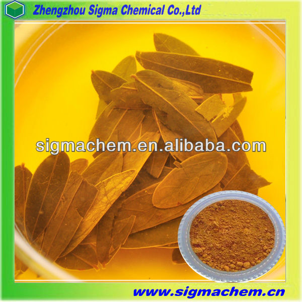 Fructus, Fructus Suppliers and Manufacturers at Alibaba.com.