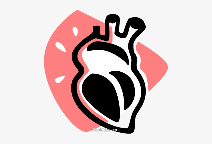 Human Heart Royalty Free Vector Clip Art Illustration.