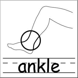Clip Art: Parts of the Body: Ankle B&W I abcteach.com.