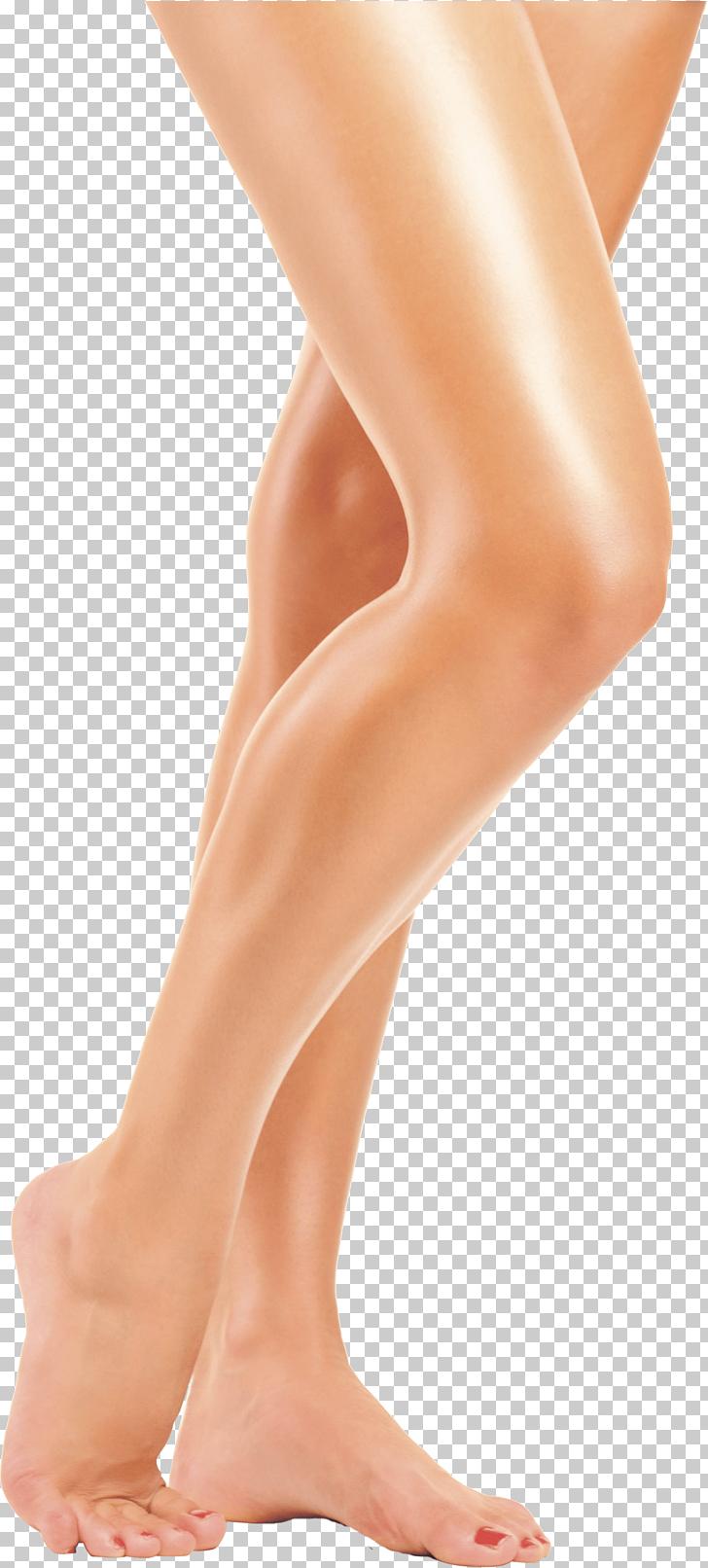 Leg , Legs Transparent, human legs PNG clipart.