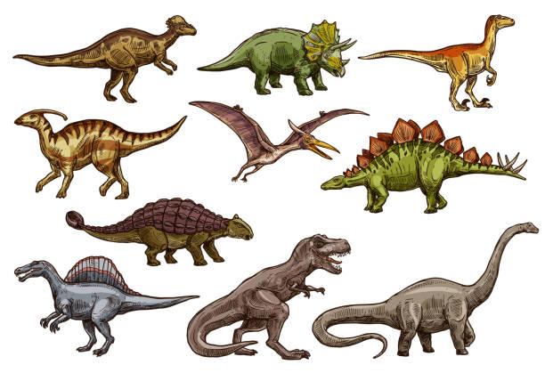 Best Ankylosaurus Illustrations, Royalty.