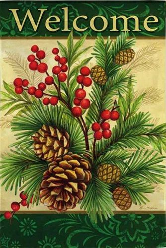 1000+ images about CHRISTMAS & WINTER on Pinterest.