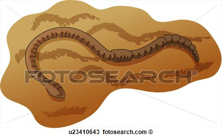 Wild Animal Earthworm Soil Annelida Round Worm Icon Animal View.