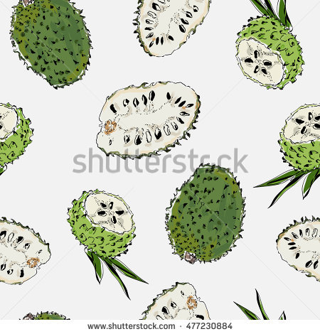 Annona Muricata Stock Photos, Royalty.
