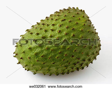 Stock Photography of Guanabana (Annona muricata) we032061.