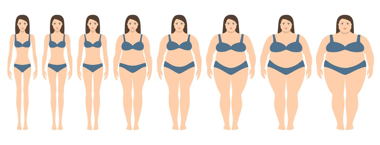 Vector illustration of women with different weight from.
