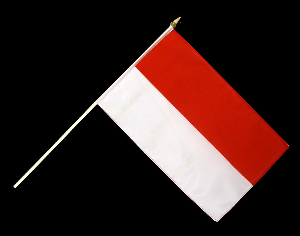 Anp Flag Clipart.