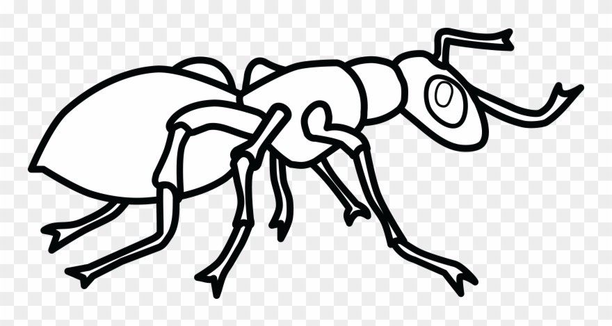 Free Clipart Of An Ant Free.