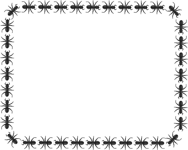 Ant border rectangle Free vector in Open office drawing svg ( .svg.