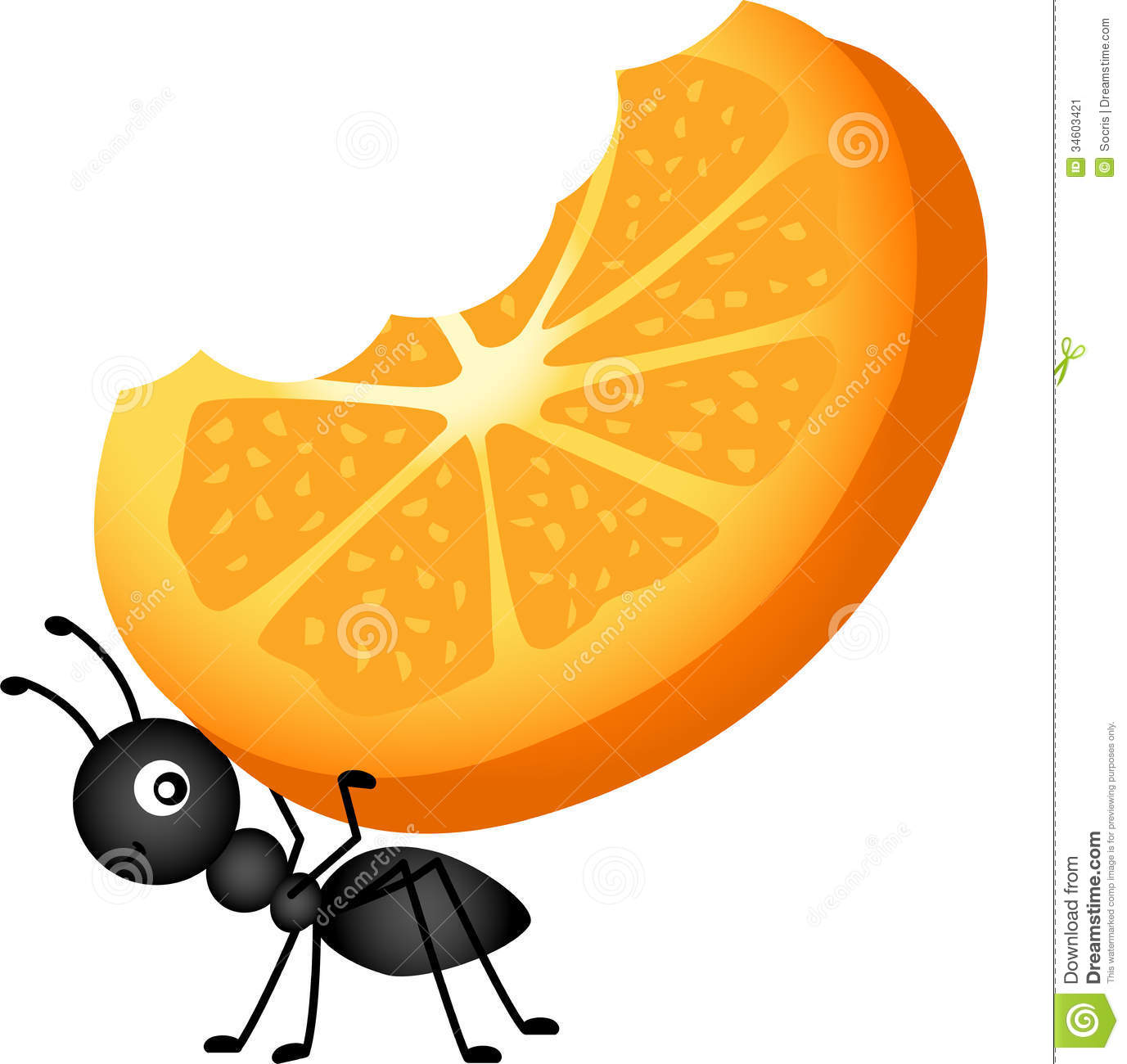 Ants Carrying Food Clipart.