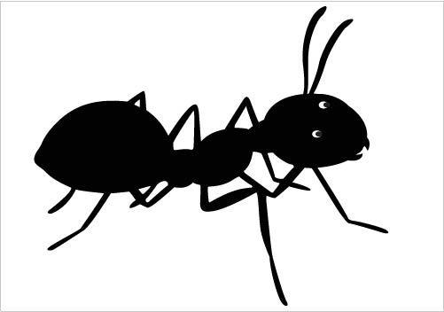 Ant Clip Art.