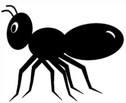 Ant clipart images.