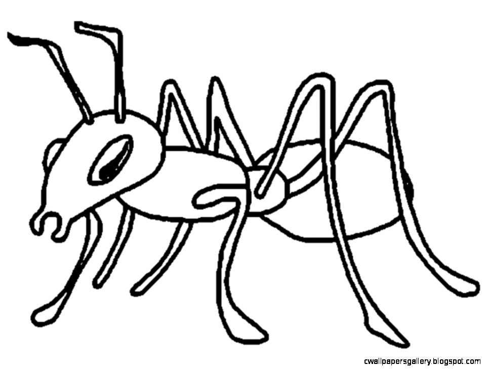 Ants clipart black and white, Ants black and white.
