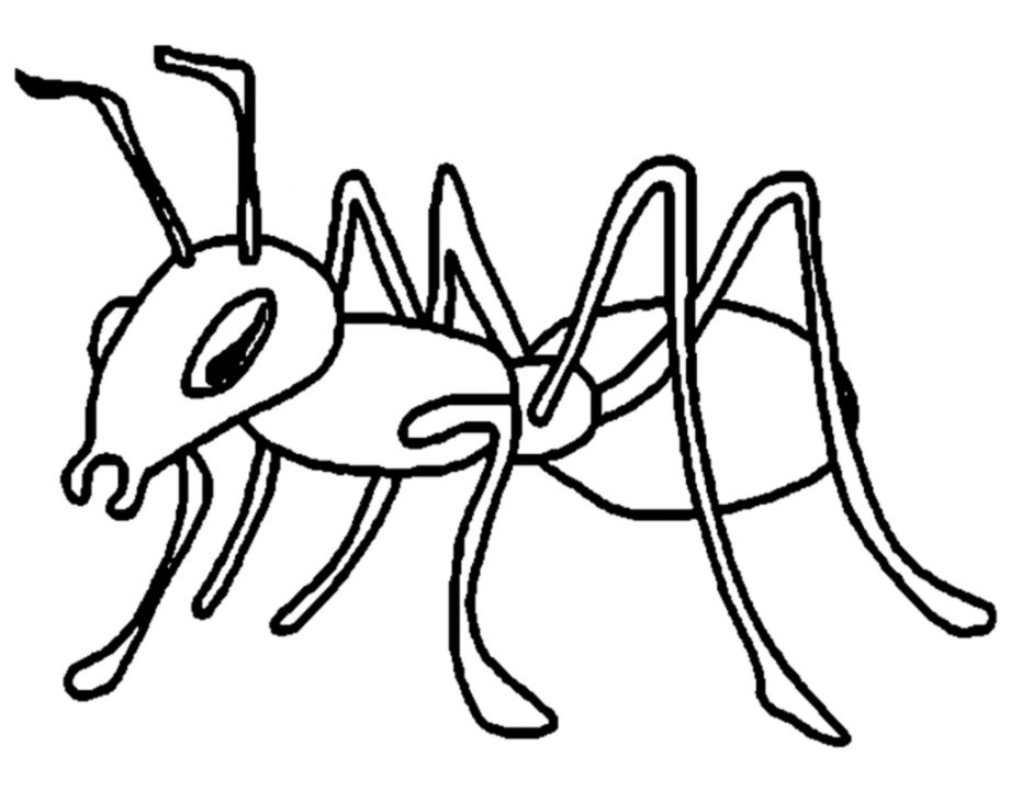 Ants Clipart Black And White.