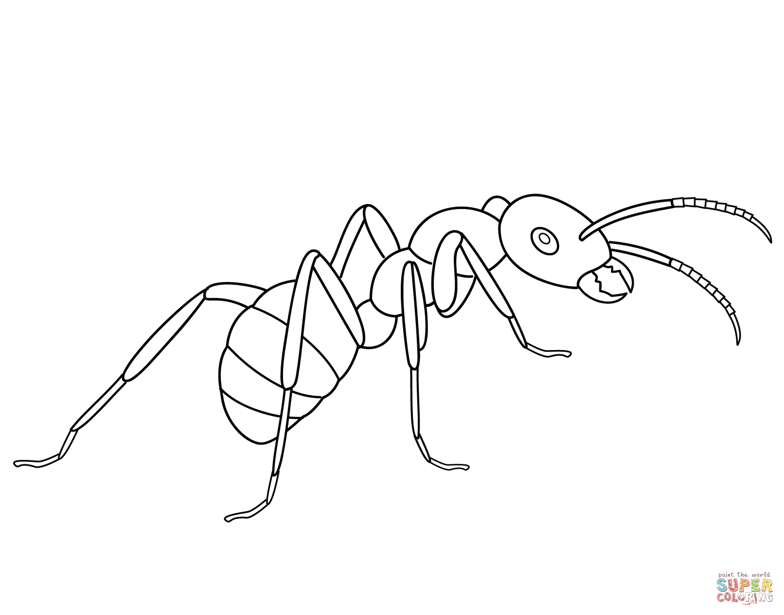 Ants coloring pages.