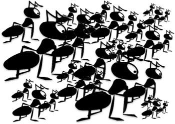 Free Ant Gifs.