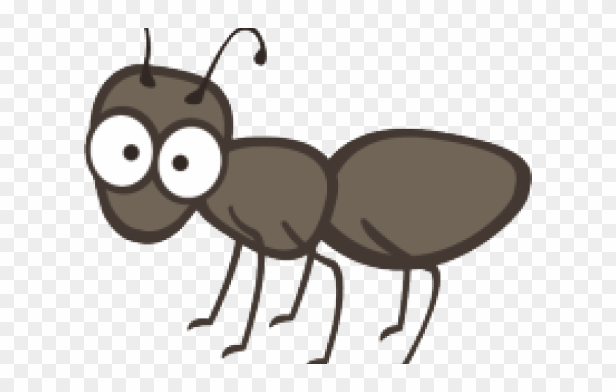Ant Clipart Single.