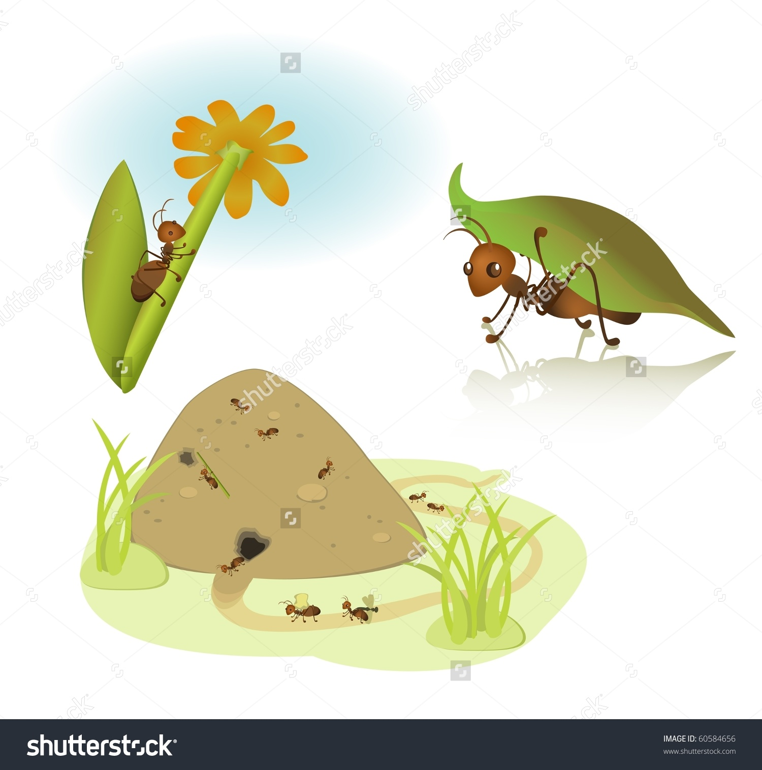 Ant home clipart.