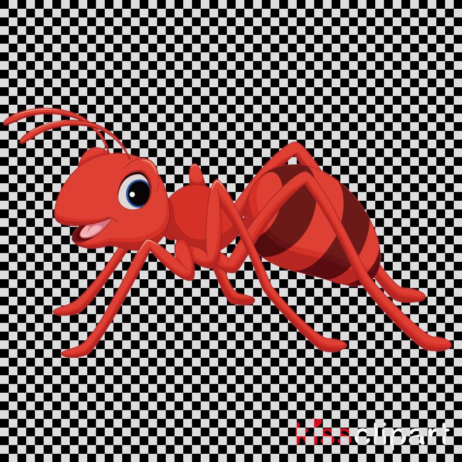 Ant Cartoon clipart.