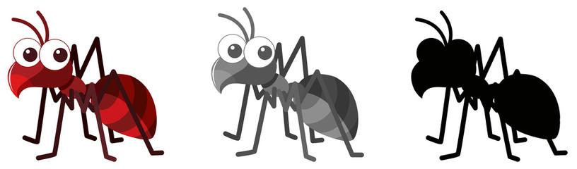 Ant Clipart photos, royalty.