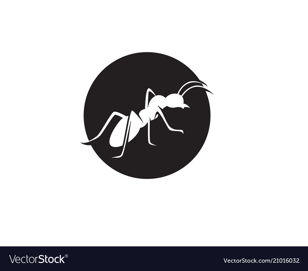 Ant logo template design.