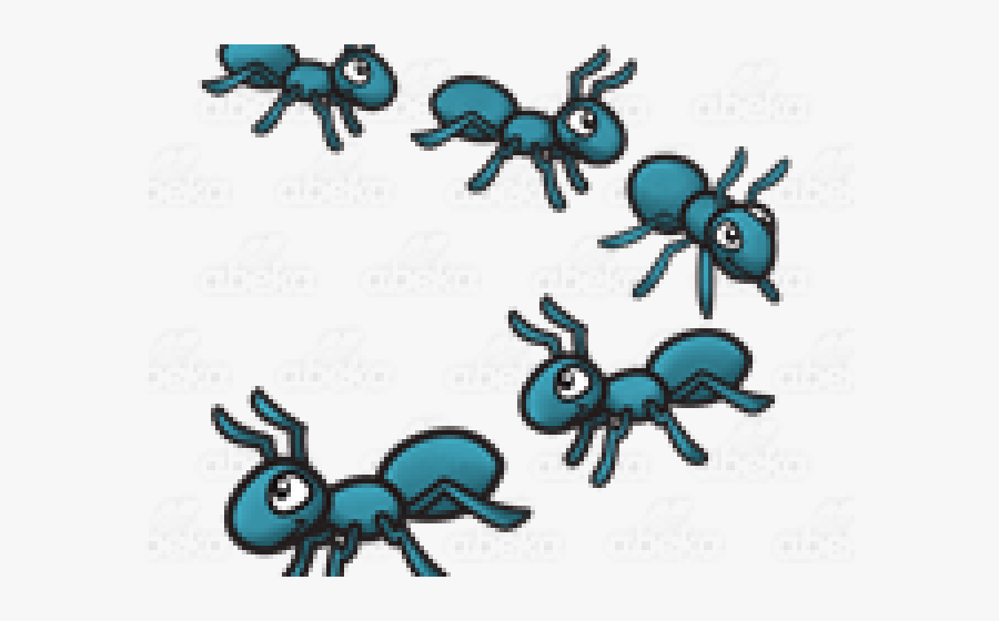 Marching Ants Clipart , Transparent Cartoons.