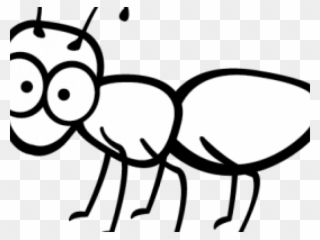 Free PNG Ant Clip Art Download.