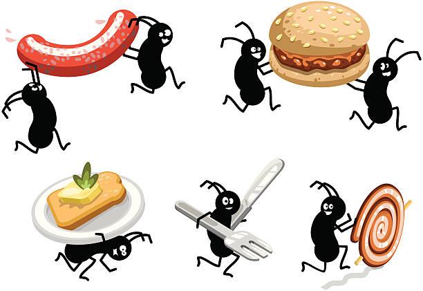 Best Picnic Ants Illustrations, Royalty.