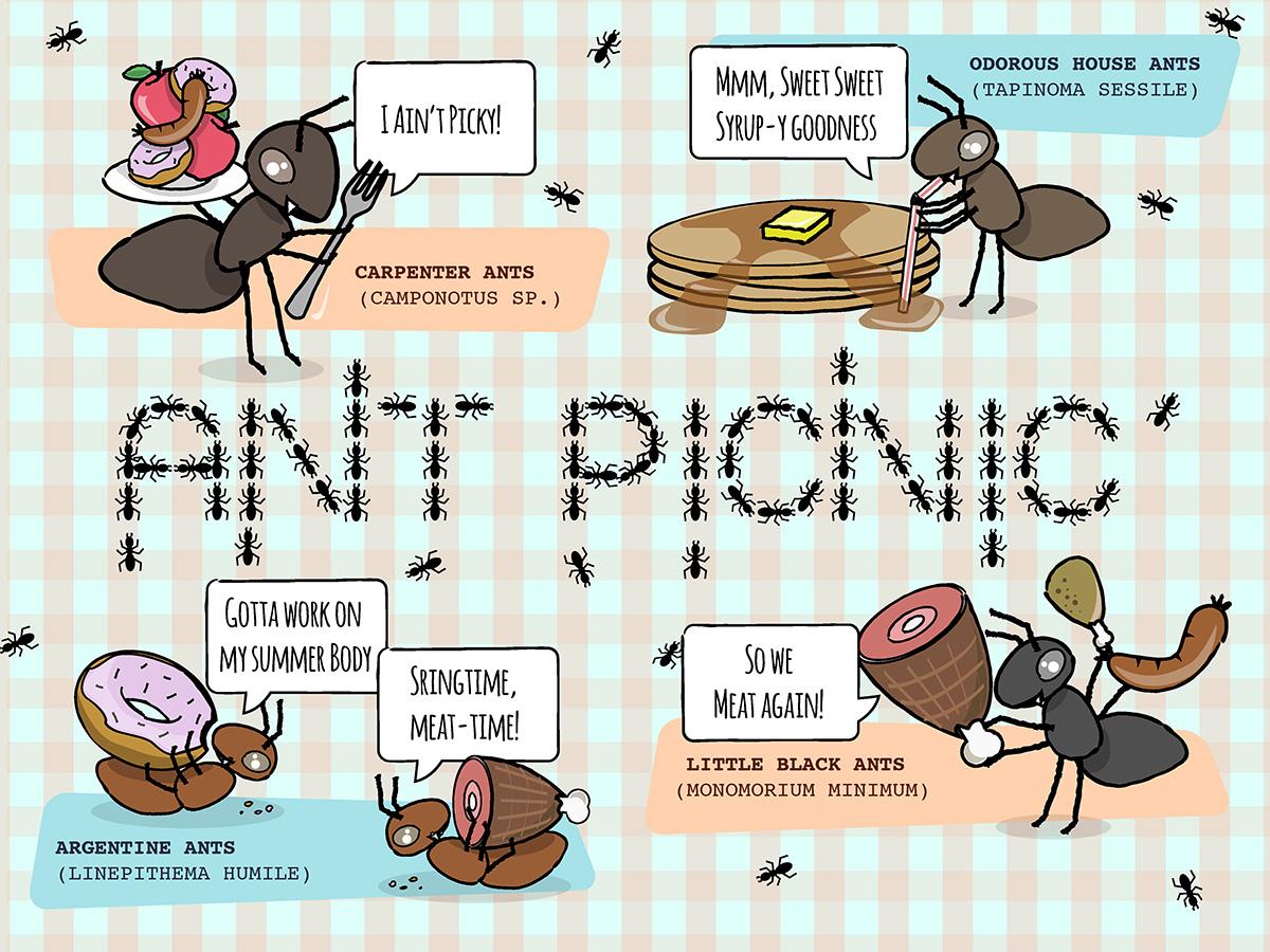 Ant Picnic.