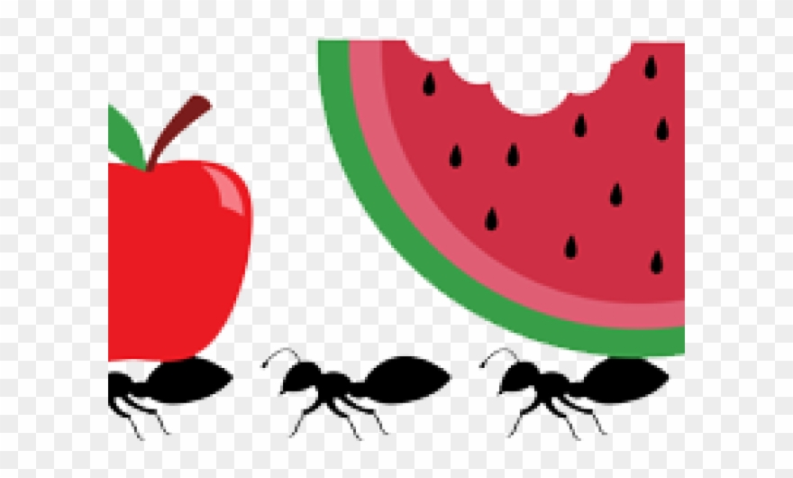 Ant Clipart Picnic Item.